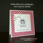 Ladybug fun!
