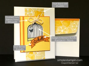 411's of a card, Badges & Banners Bundle Stampin' Up!, Fruit Stand DSP, Susan Itell - stampinup