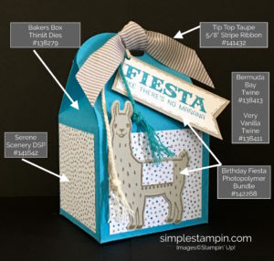 Bakers Box Framelits Birthday Fiesta Bundle Detail Stampin Up - Susan Itell Stampinup