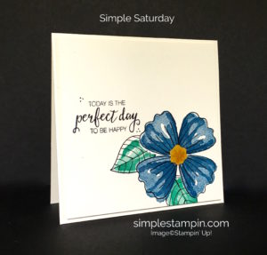 Bunch of Blossoms Bundle Stampin' Up!, Clean and SImple FLoral Card, Susan Itell - stampinup