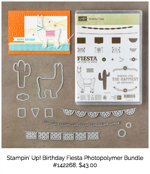 Birthday Fiesta Bundle