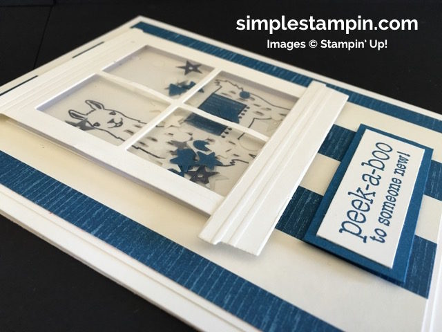 Simple Stampin' Baby Card, Shaker Card Stampin' Up!, Birthday Fiesta Bundle, Suite Sayings Stamp, Susan Itell