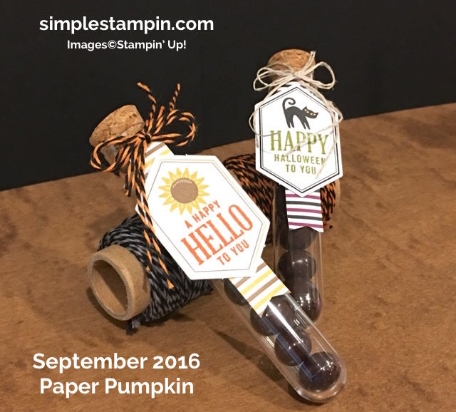 stampin-up-halloween-card-paper-pumpkin-september-2016-halloween-night-bakers-twine-halloween-night-dsp-susan-itell-simplestampin