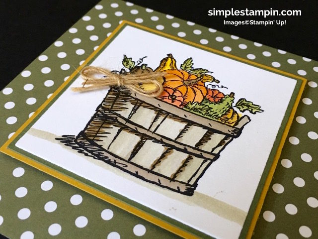 stampin-up-pals-blog-hopbasket-of-wishesaqua-painterfall-cardwatercoloringlinen-threadregal-dsp-stack-susan-itell-simplestampin-jpg-jpg-jpg