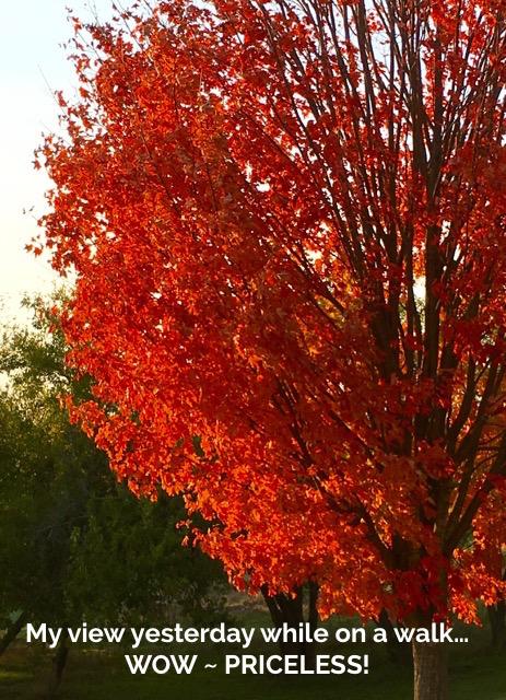 fall-2016-simplestampin