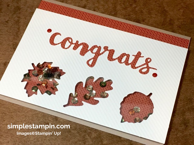 stampin-up-paper-pumpkin-october-2016-kit-susan-itell-4-simplestampin