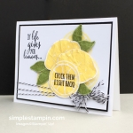 "How about a ""lemon""  and more Blog Candy!"